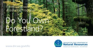 DoYouOwn Forestland