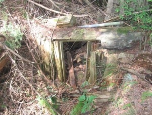 Abandoned privy.