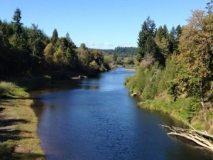 Chehalis Basin Watershed Management Plan