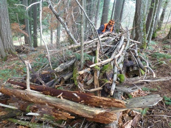 habitat pile under construction