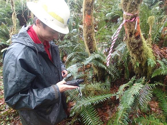 Riparian Easement Forester Whitney Butler