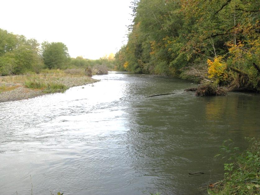 Wynoochee River
