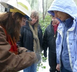 Julie Sackett, stewardship forester, DNR Small Forest Landowner Office