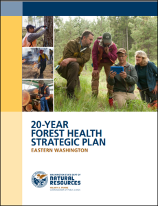 forest health strategic plan cover