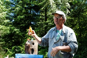 ken bevis woodpecker
